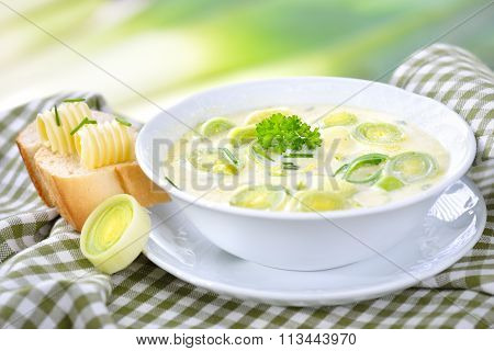 Vegetarian cheese and leek soup
