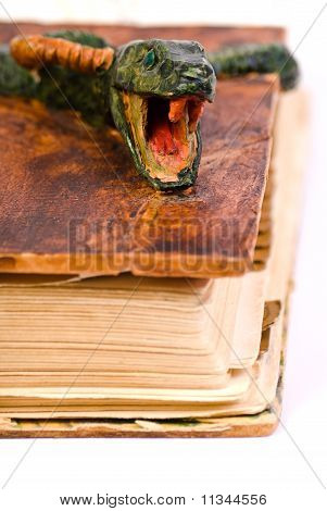 Old book with snake shaped cower