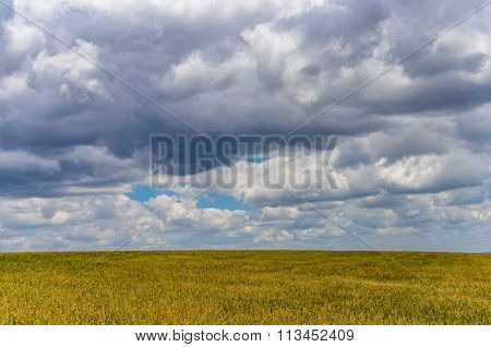 Beautiful Field And Bright Blue Sky With White Clouds