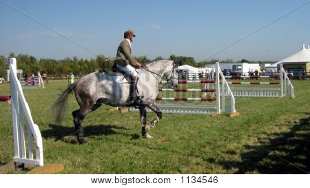 Showjumping Competor Warming Up Before Competing