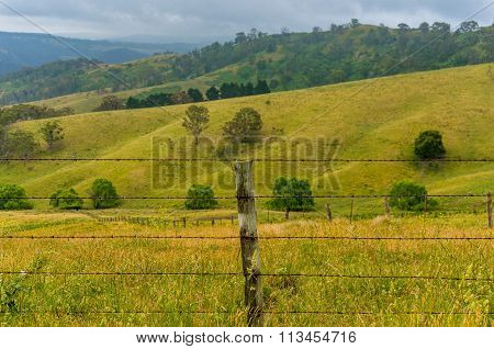 Rural nature. Beautiful summer landscape with wire fence and field.