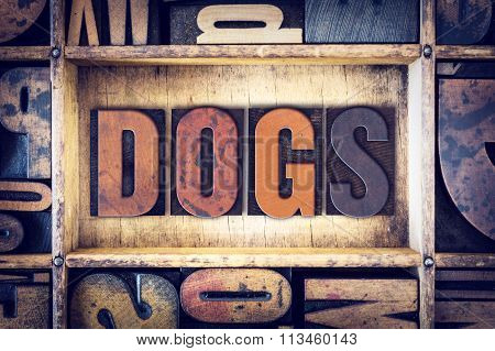 Dogs Concept Letterpress Type