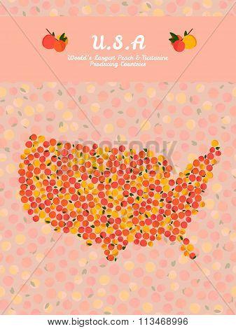 U.S.A map poster or card. Healthy food postcard.