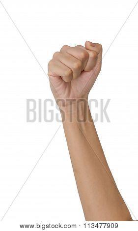 Fist,hand