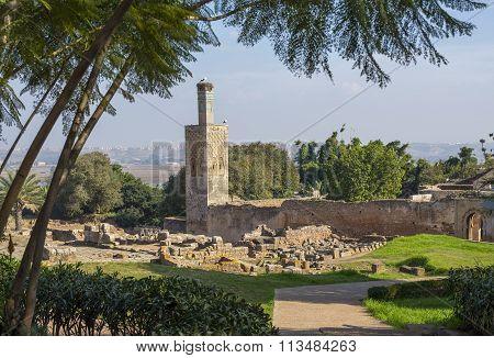 Ruins Of Chellah Necropolis. Rabat. Morocco.