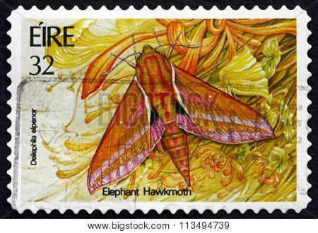 Postage Stamp Ireland 1994 Elephant Hawkmoth