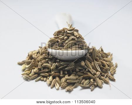spoon of cumin on the white background