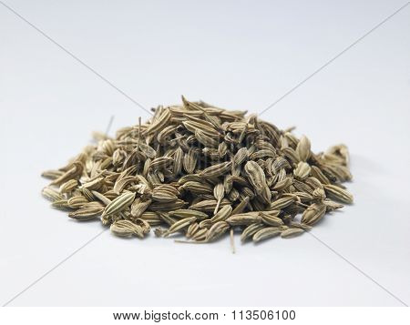 cumin on the white background