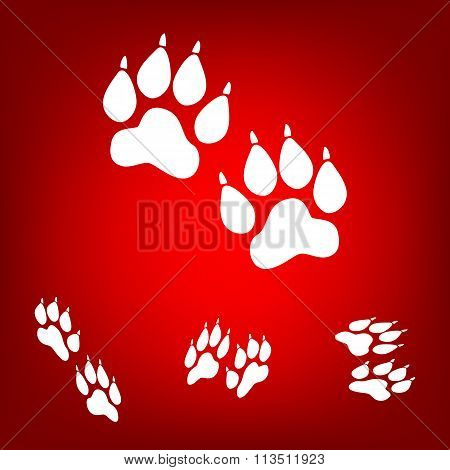 Animal Tracks. Vector illustration