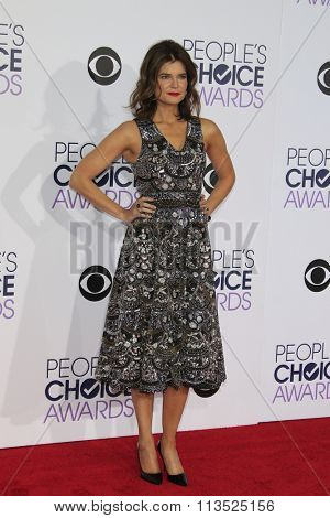 LOS ANGELES - JAN 6:  Betsey Brandt at the Peoples Choice Awards 2016 - Arrivals at the Microsoft Theatre L.A. Live on January 6, 2016 in Los Angeles, CA