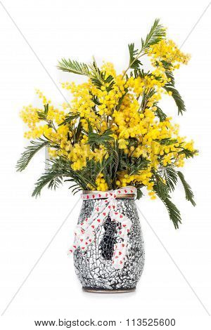 Vase With Mimosas