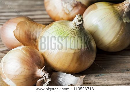 Close-up of golden onion bulbs  on a wooden background in the horizontal format