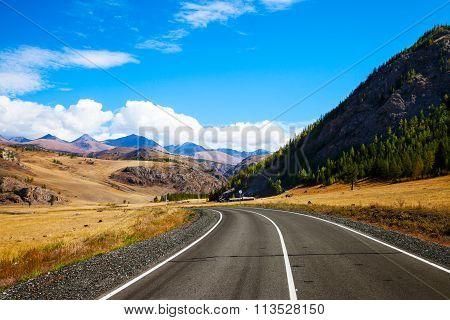 Landscape With Rural Asphalt Road