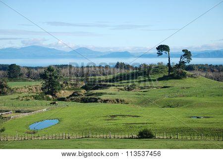 Surroundings of Lake Taupo