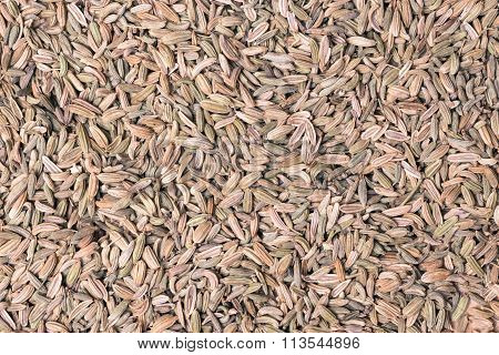 Fennel Dill Seeds As Food Background