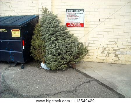 dumpster rules with x-mas trees
