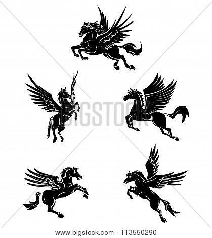Tattoo Symbol Of Horse Wing Tattoo