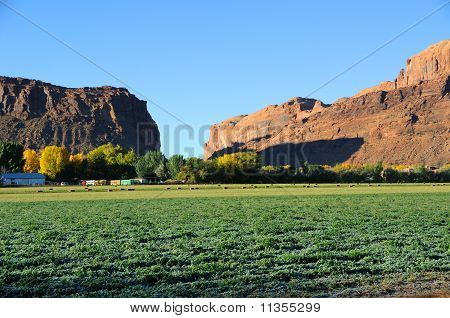 Moab Desert Farm at Sunrise in the Fall