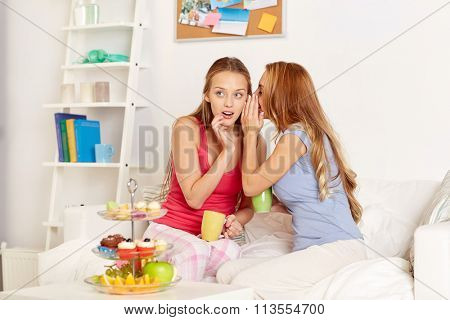 young women drinking tea and gossiping at home