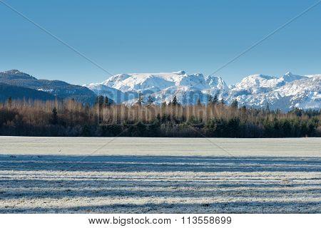 Comox Valley Glacier From A Field In Winter