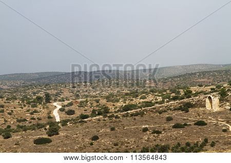Valley In Israel In The Summer.