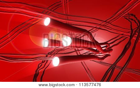 Illustration Of Artery System With Searchlight