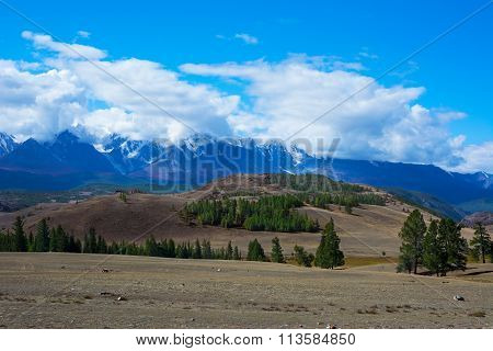 Aktru Glacier Altay Mountains