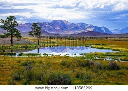 Colorful Spring Steppe Mountain Landscape