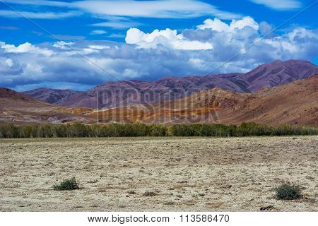 Mountain View Steppe Landscape