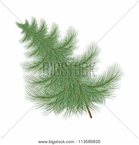 Fluffy Green Christmas Tree Tilted To The Side