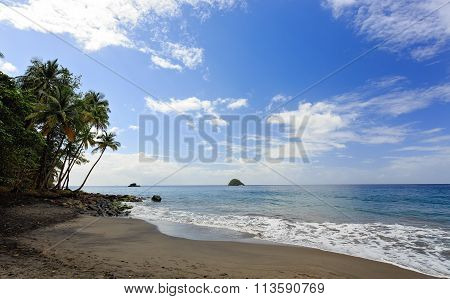 Anse Couleuvre Beach, Martinique, Caribbean
