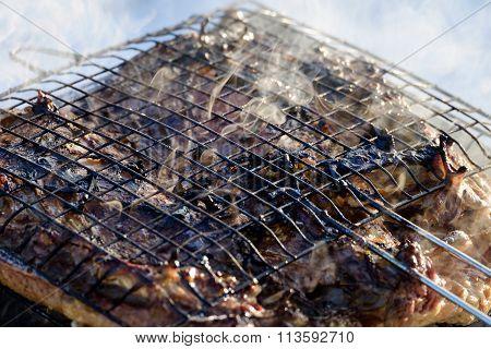 tasty roast duck
