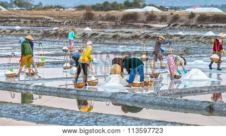 Farmers pour salt in the salt pans