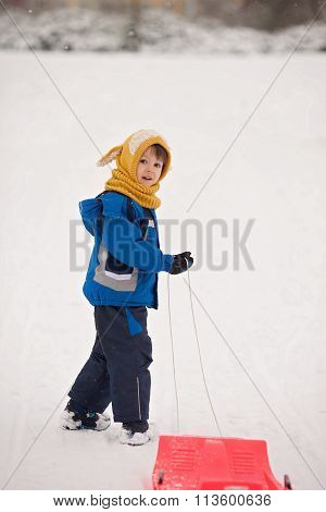 Cute Kid, Boy, Sliding With Bob In The Snow, Wintertime