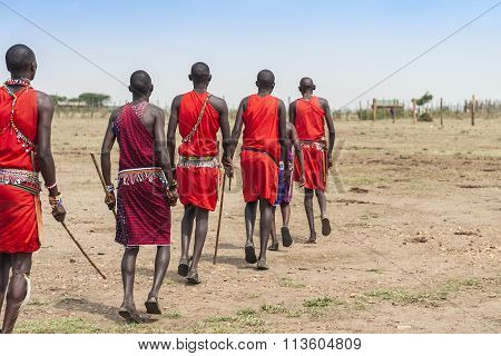 African tribe Masai Mara in red wear in Kenya