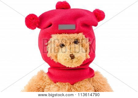 Teddy bear in winter knitted hat