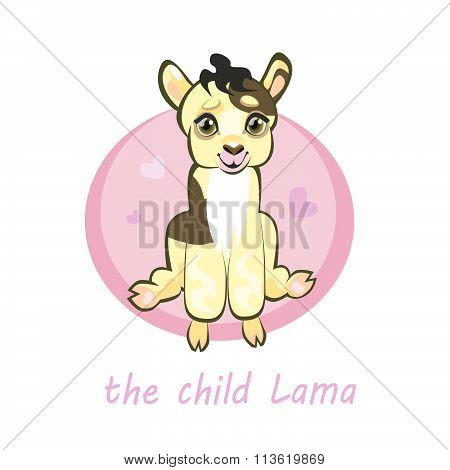 Sweetie, baby llamas, newborn sitting. Greeting card or kids print.