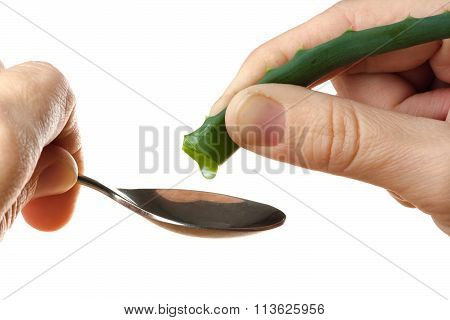 Hand Squeezing The Juice Out Of A Aloe Vera Into Spoon