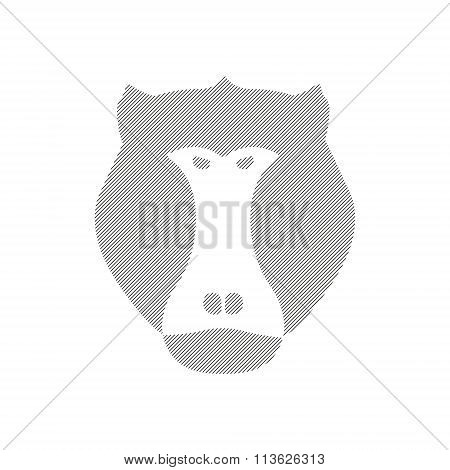 Striped Head Of Baboon, Aggressive Monkey In Vector
