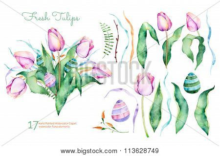 Delicate spring floral collection with tulips