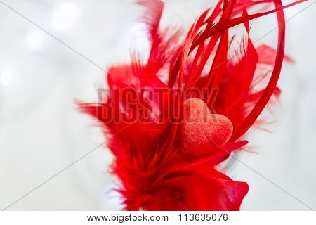 Red Heart Is Laying On Pile Of Red Feathers