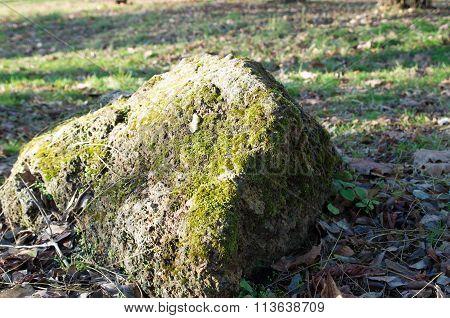 Large Stone Mossy Boulder