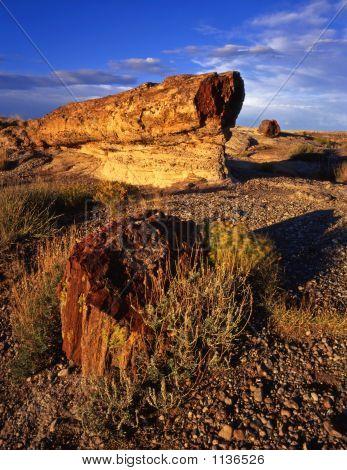 Petrifiedrocks#Two
