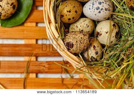 Dietetic Quail Eggs In A Basket. Easter.