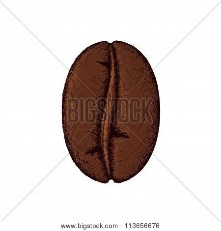 Coffee Bean. Stock Illustration.