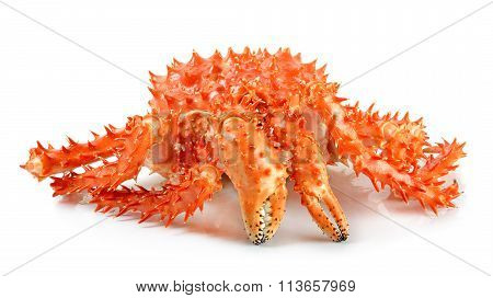 Alaskan King Carb In Isolated White Background