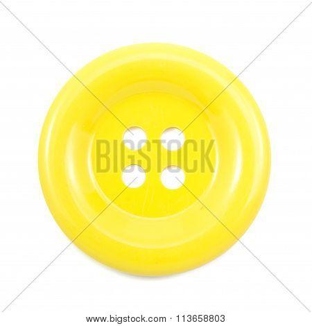 Yellow Clasper