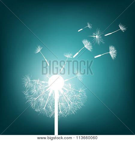 Glowing Dandelion. Stock Illustration.
