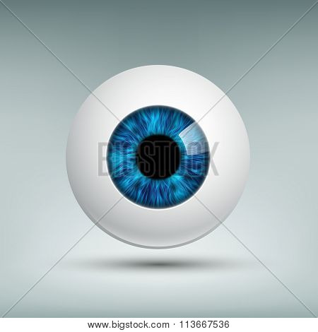 Human Eyeball. Stock Illustration.