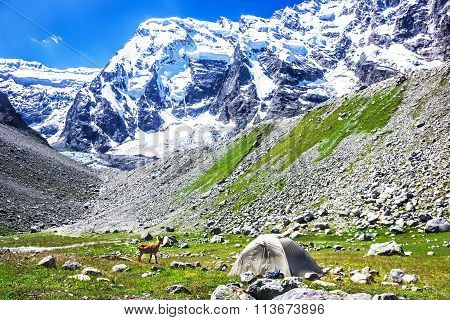 Tent On A Background Of Mountains